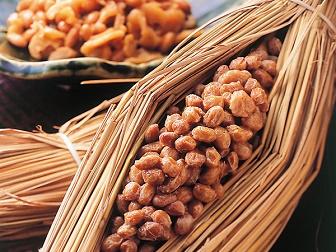 納豆(納豆菌)