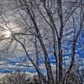 winter-417172_640