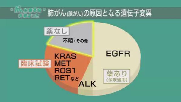 %e3%81%8c%e3%82%9308-%e8%82%ba%e3%81%8c%e3%82%93%e9%81%ba%e4%bc%9d%e5%ad%90%e8%a7%a3%e6%9e%90%e3%82%b0%e3%83%a9%e3%83%95