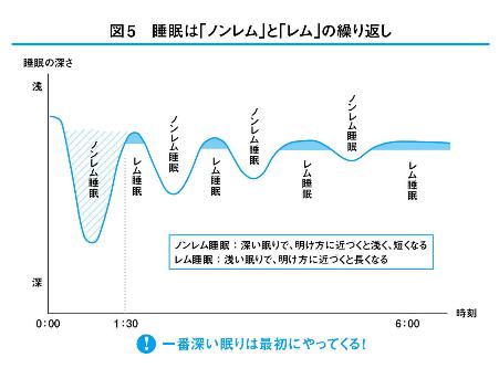 睡眠 レム・ノンレムのグラフ(本から)