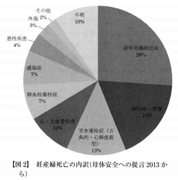 無痛分娩 妊産婦死亡の内訳グラフ