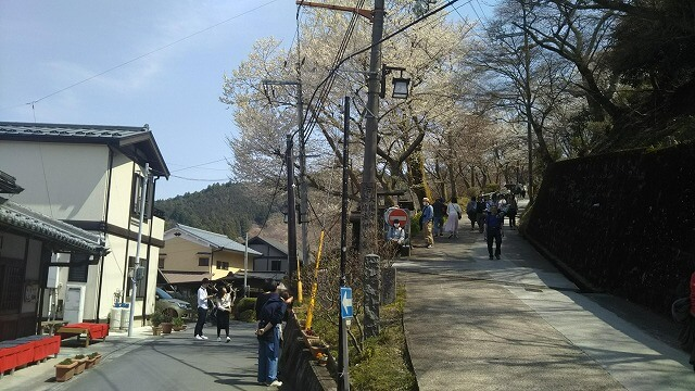 吉野山 中千本の桜の名所への道のり